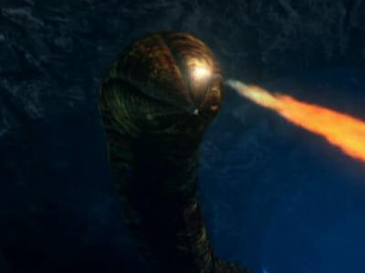 seaQuest bore worm