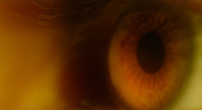 Close up of Stephen's eye