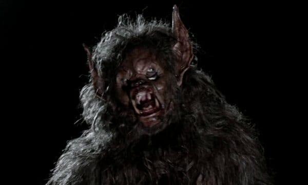 Werewolf close up